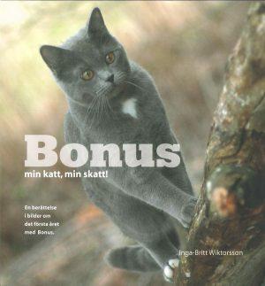 Bonus- min katt