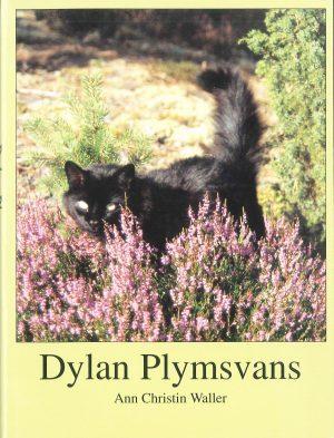 Dylan Plymsvans - Waller